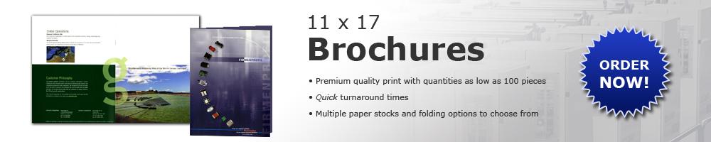11x17 Brochure